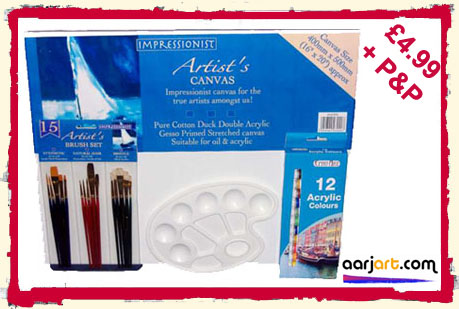 29 piece large canvas acrylic art set