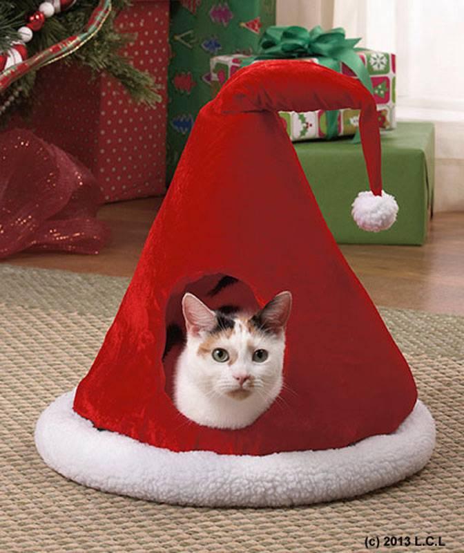 Cat Hideout House