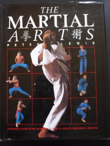 THE-MARTIAL-ARTS-PETER-LEWIS-HC-DJ-BEGINNERS-GUIDE