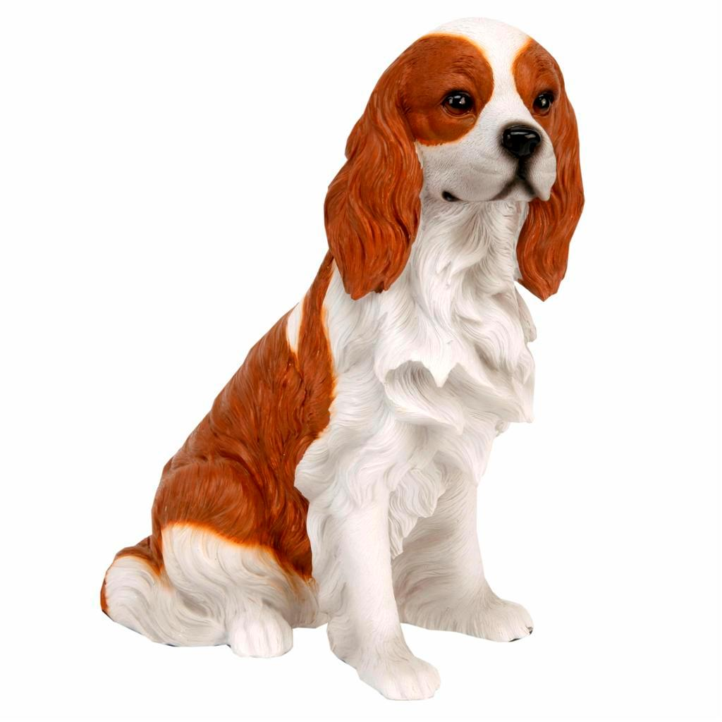 Best Mid Size Watch Dog