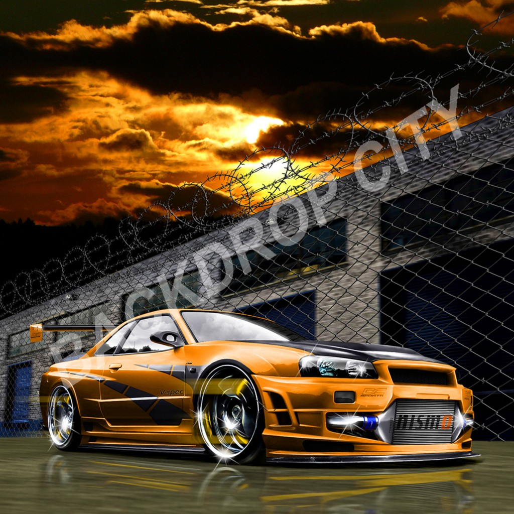 ORANGE SUNSET Computer Printed Backdrop and Digital Image