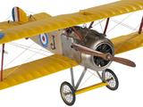 Biplane Airplane Built Wooden Authentic Models