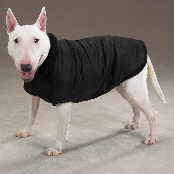 Dog THERMAL LINED Coat Jacket XXS, XS, S, M, L, XL, XXL in Pet Supplies, Dog Supplies, Apparel | eBay