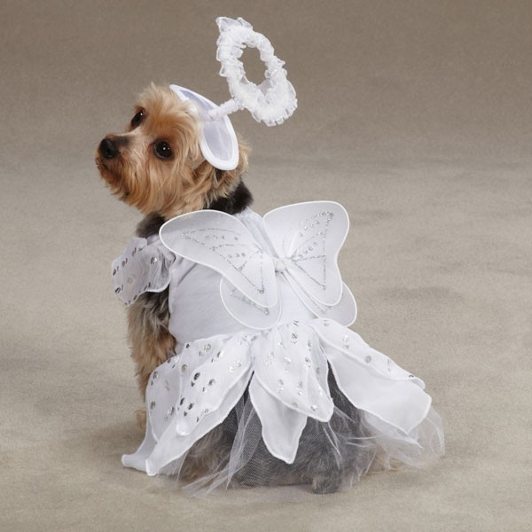 ANGEL-PAWS-Puppy-Pet-Dog-Halloween-Christmas-Costume-Canine-Clothes-XS-S-M-L-XL