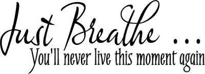 Vinyl Wall Decals Art Lettering Just Breathe Moment