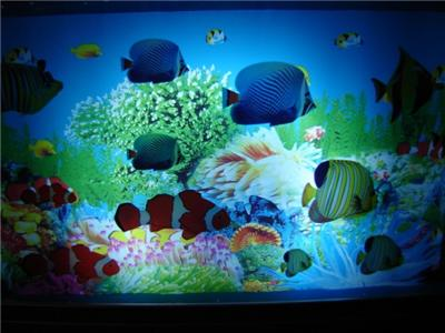 New tropical fish aquarium motion lamp night light for Fish tank night light