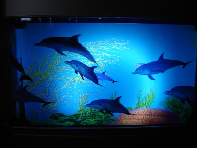 NEW DOLPHIN AQUARIUM MOTION LAMP NIGHT LIGHT