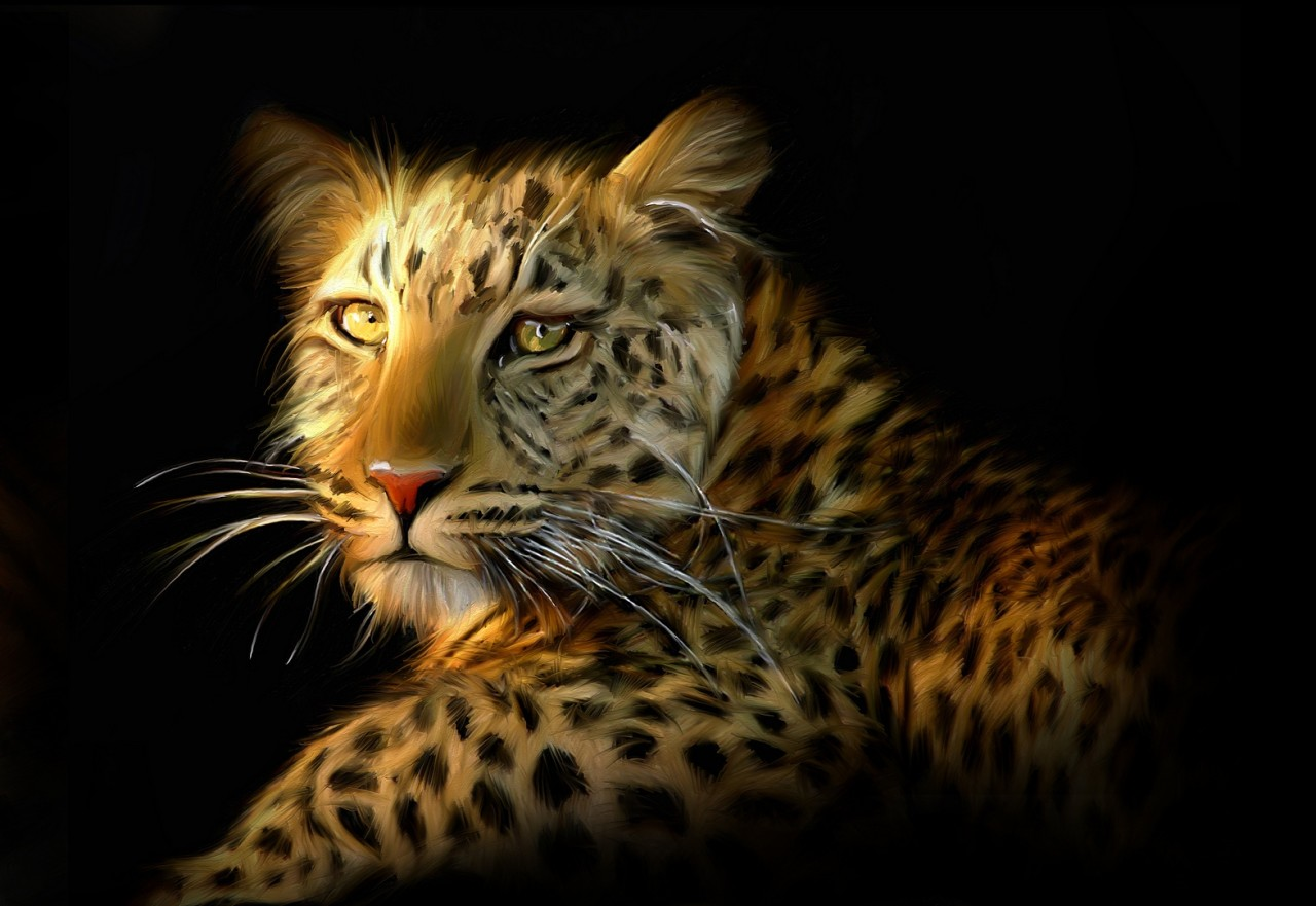 Lion-Tiger-Leopard-Large-16-x-11-A3-Size-Canvas-Painting-Style-Picture-Print