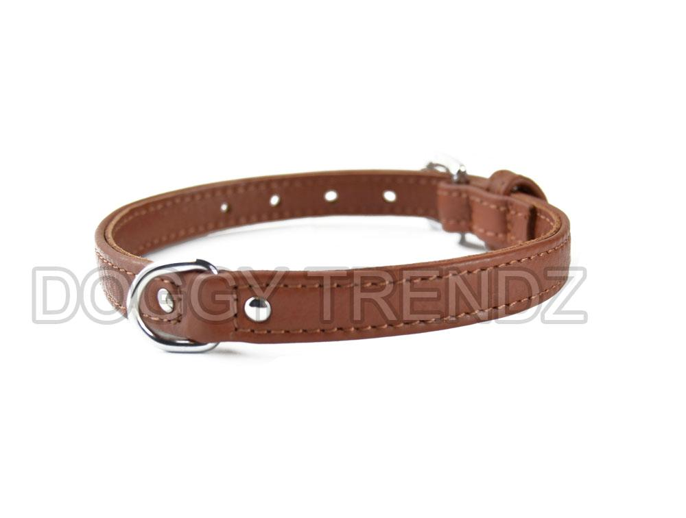 What Width Collar For A Staffie Dog