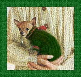 Knitted sweater pattern for a little chihuahua eBay