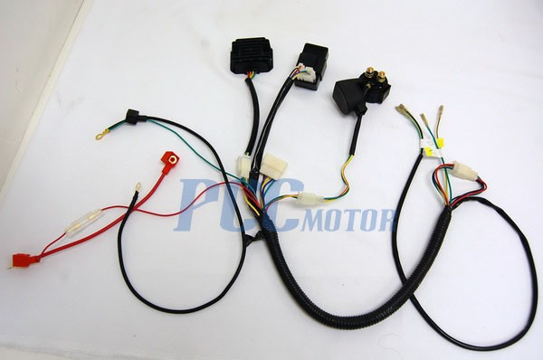 Wiring Diagrams for Lifan 200CC – Dirt Bike Wire Harness