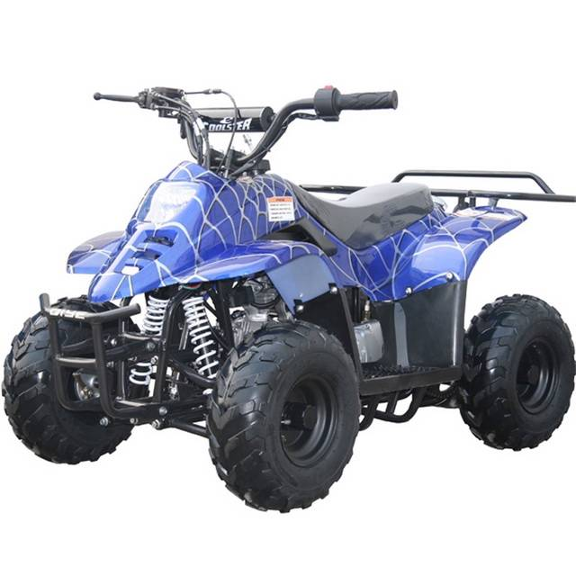 Well, you can look no more than the best ATVs from Megamotormadness. We offer a variety of the latest models and best ATVs, yet totally affordable. And we provide assembly for most of the ATVs, with a full test before we ship to you. All ATVs are backed with warranty and our .