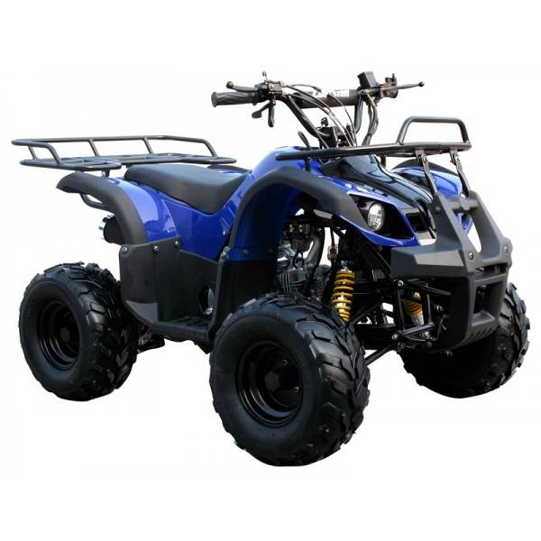 Free Shipping   Coolster 125cc Automatic    Reverse Atv