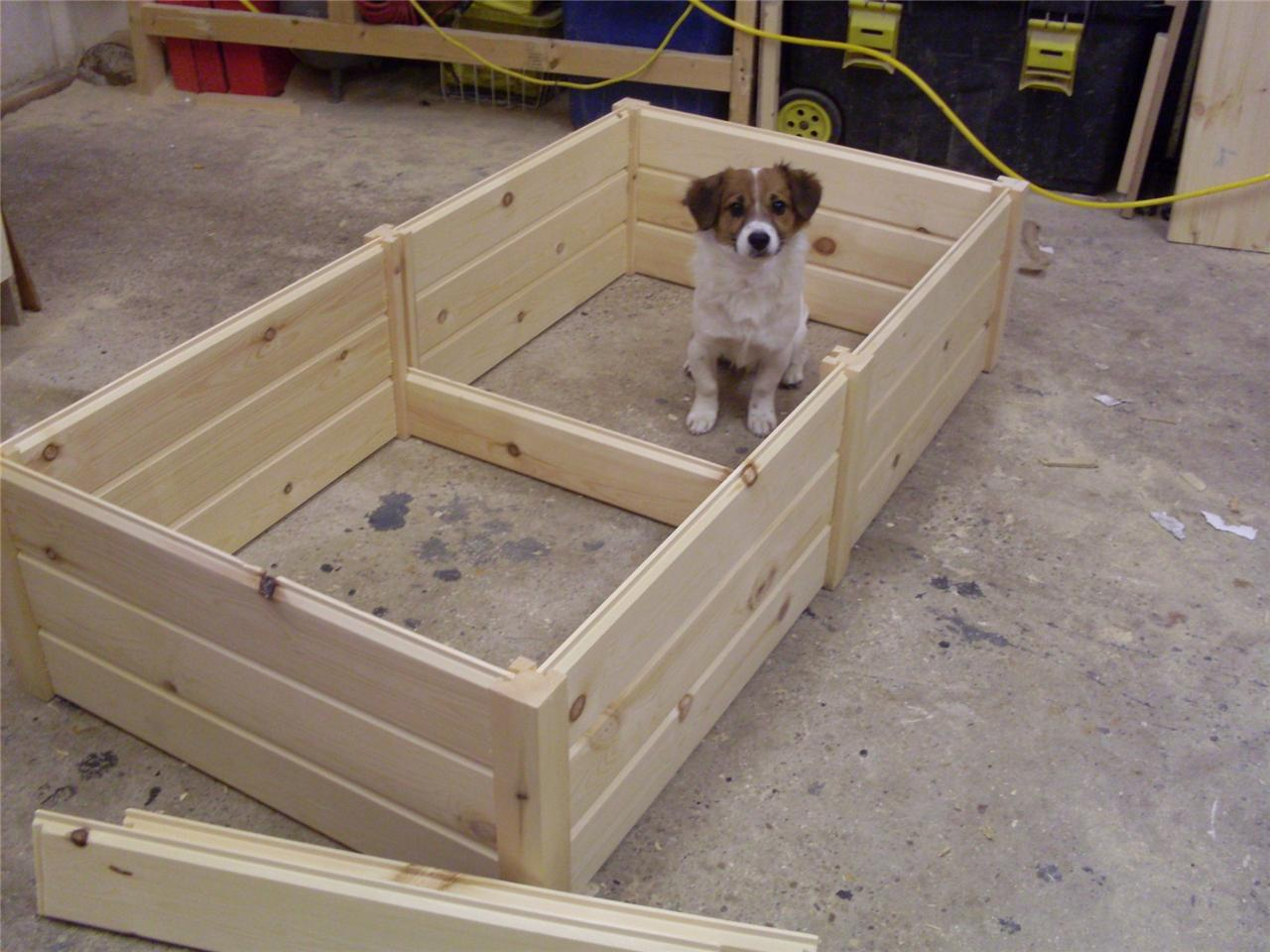 How To Make Toy Dog Kennels