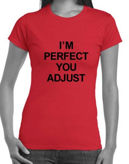 ... -You-Adjust-Hobo-T-shirt-Singlets-Mens-Womens-Retro-funny-slogan