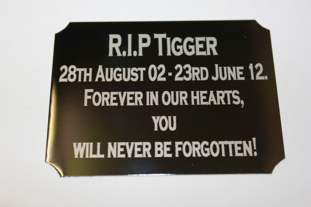 Engraving-plate-plaque-100mm-x-your-choice-height-including-engraving