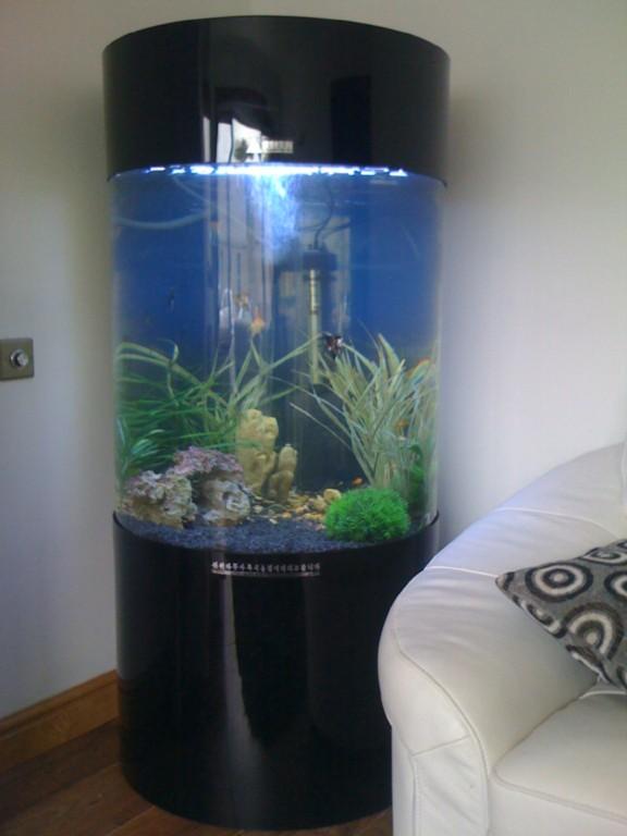 Column cylinder aquarium acrylic fish tank 260l new ebay for Column fish tank