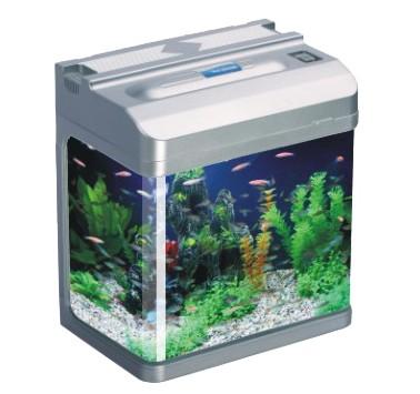 Small Tropical Fish Tank Aquariums Mince His Words