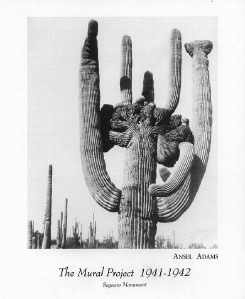 Ansel adams photo art print saguaro monument 8x10 in ebay for Ansel adams the mural project prints