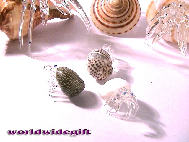 how to make a glass hermit crab shell