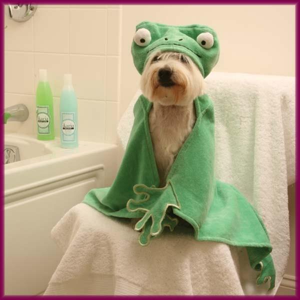 BARNYARD DUCK LAMB BUNNY HOODED HOODIE LARGE PET DOG BATH