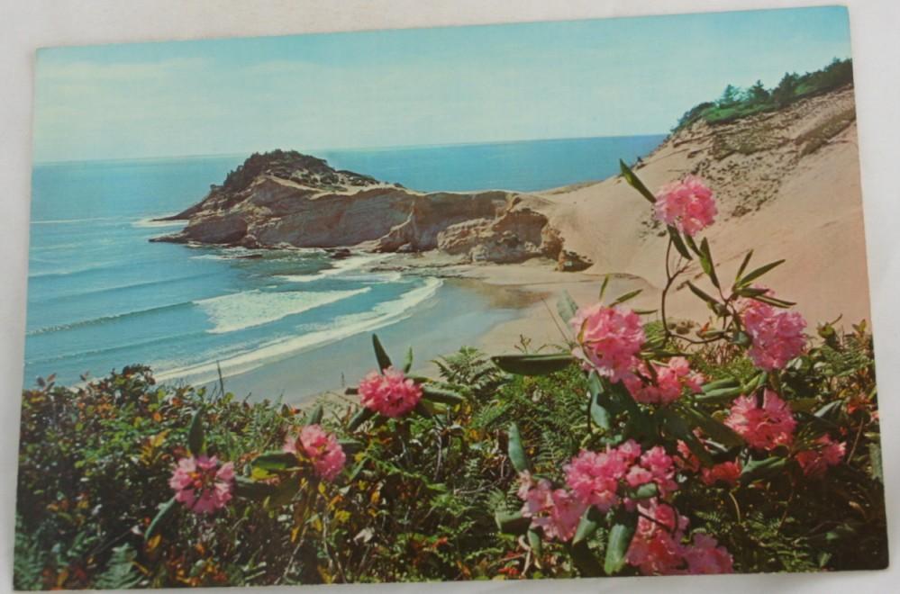 vintage postcard, Oregon Coastline, Coast, folder