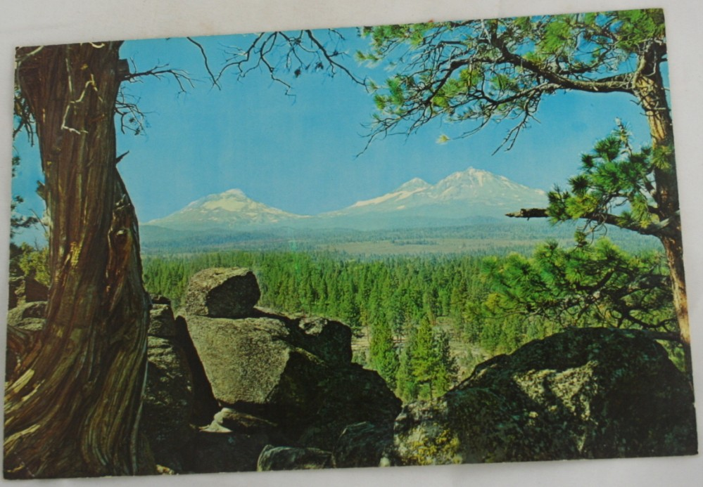 vintage postcard, Central Oregon, Three Sisters