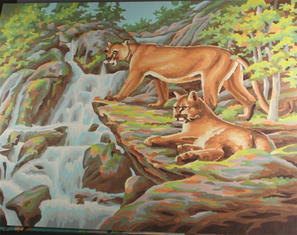 vintage paint by number, completed, finished, cougar, mountain lion, stream, waterfall