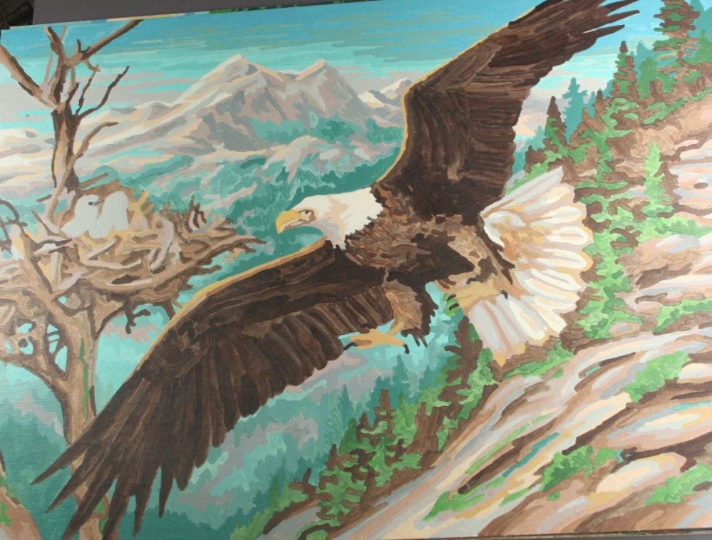 vintage paint by number, completed, finished, eagle, nest, wings spread, mountain