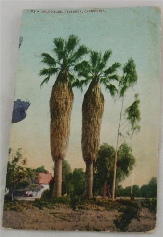 vintage postcard,hand colored,hand coloured,California,Pasadena, twin palms