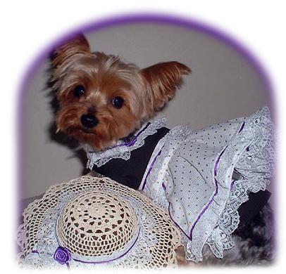 Dog Sewing Patterns | eBay