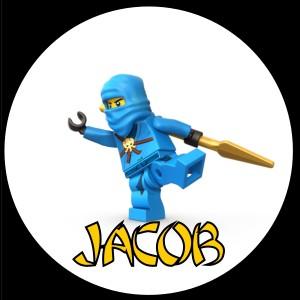 LEGO NINJAGO VALENTINES DAY CARDS   30 w/ENVELOPE SEALS NINJA
