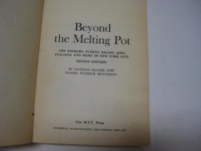 beyond the melting pot negroes ricans jews nyc