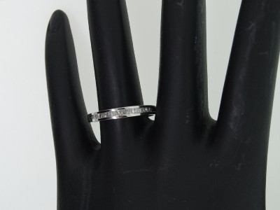 Up for SALE is a Brand New Ladies REAL 10K White Gold Diamond Ring.