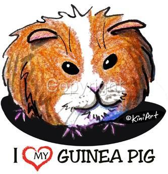 Guinea-Pig-Tshirts-Nightshirt-NWT-Kiniart-pet-critter-Ladies-Kids-Sizes