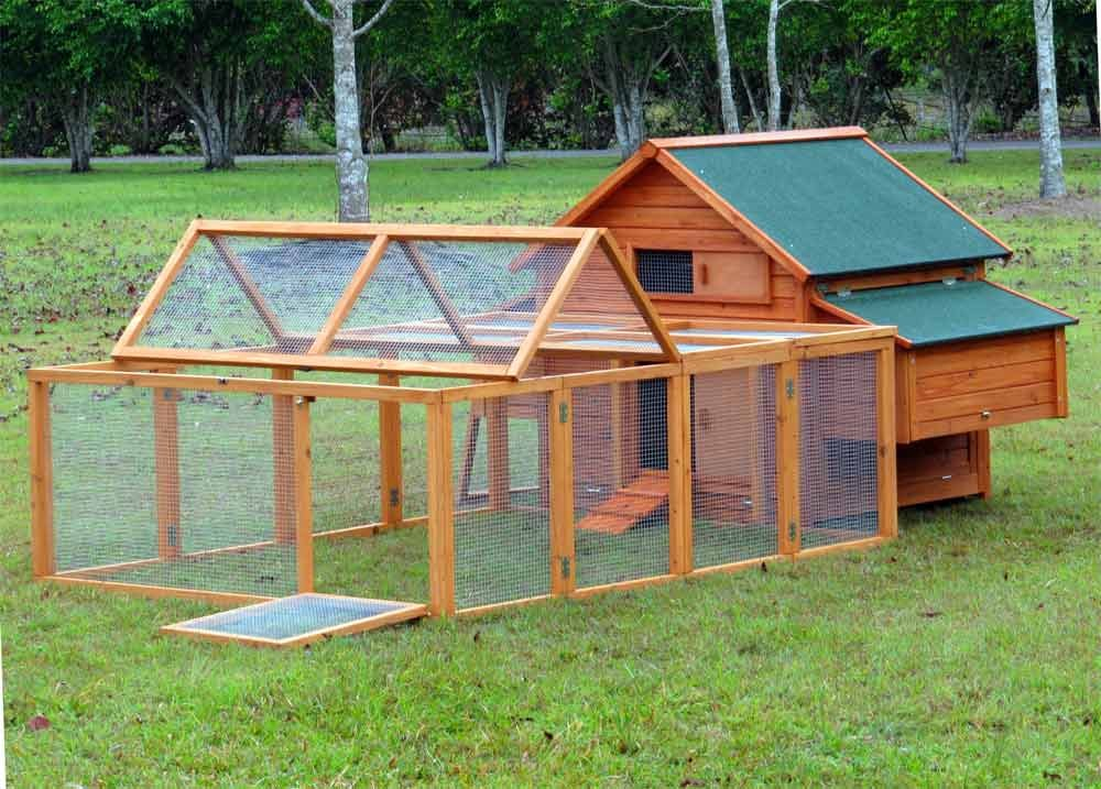 Model g210 200run 6 9 med hen xlarge chicken coop hen for Guinea pig homes