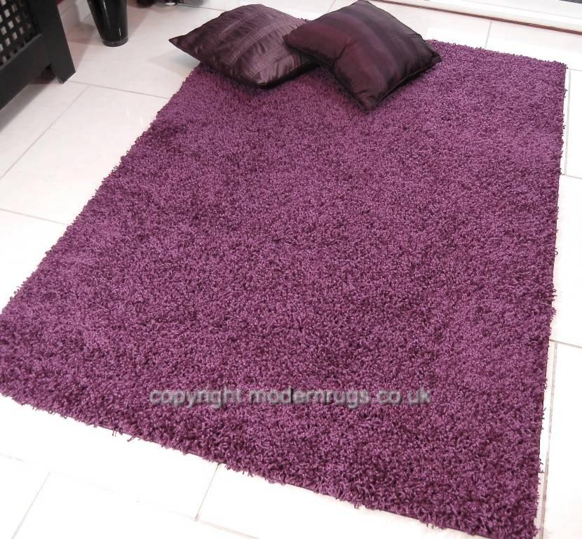 NEW SHAGGY RUGS THICK SOFT PLUSH NON SHEDDING PILE PLUM