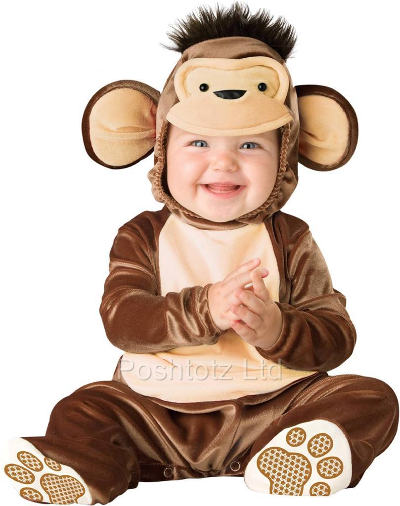Cute Little Baby Monkeys Little Baby Monkey Cute