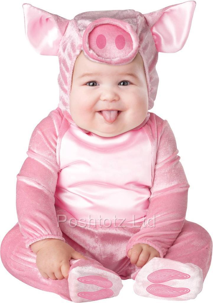 Little Baby Piglet Cute Fancy Dress Costume Months
