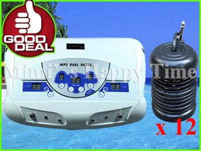 Dual Ionic Detox Foot Bath Spa  Cleanse+12 Array kit
