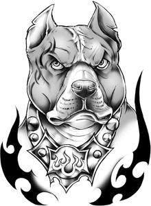 Pit bull black and grey tribal temporary tattoo awesome - Dessin de pitbull ...