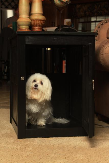Deluxe Wood Dog Crate Pen Pet House Indoor End Table