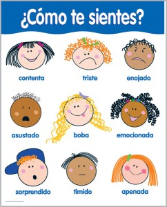 SPANISH FEELINGS Chart Poster Teacher Emotions Autism