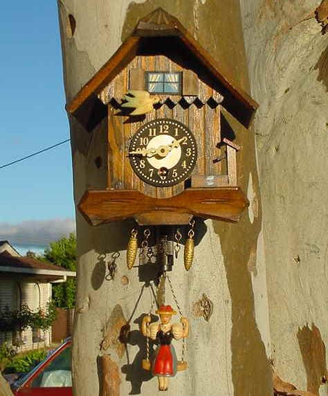 cuckoo clock pendulum quit swinging