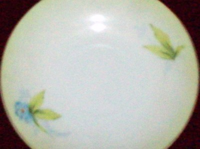 P T Bavaria China http://www.ebay.com/itm/P-T-BAVARIA-Handpainted-China-58-Blue-Flower-Saucer-/370194423634