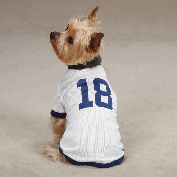 Denver Broncos Orange Dog Jersey - Dog.com