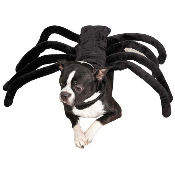 Halloween Dog Costume - Grrr-Antula Spider Dog Pet Puppy Black Widow Costume
