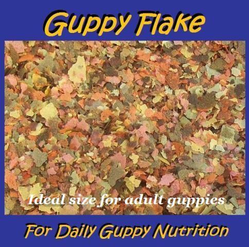 Guppy flake tropical fish food 50g guppies livebearers for Guppy fish food