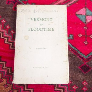 Vermont in Floodtime Luther Johnson