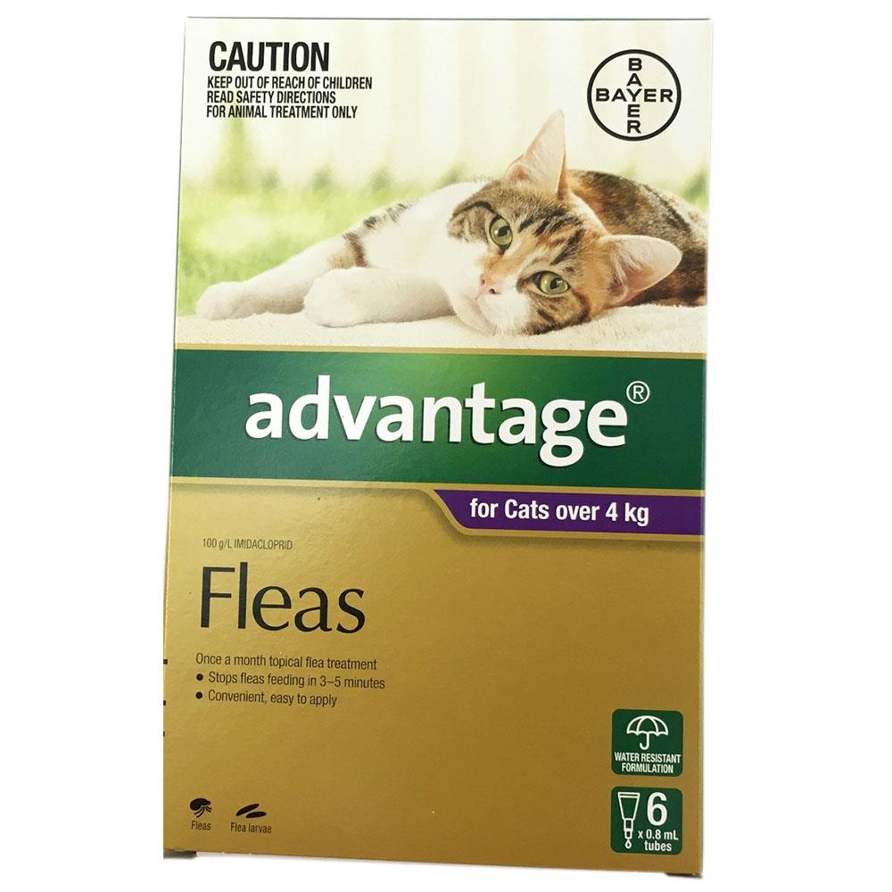 Advantage Fleas Flea Treatment Control for Cats Kittens over 4kg 6pk Bayer